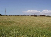 Agricultural land for sale in Ypsonas