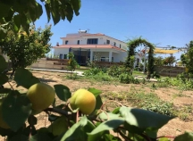 Luxury villa off Larnaca-Dekelhia road